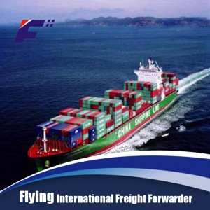 Air shipping agent and shipping forwarder in China