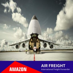 International Airline Cargo Shipment