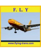 DHL express to USA Germany|China shipping courier|logistics