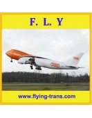 China cargo transportation agent of TNT courier to Germany